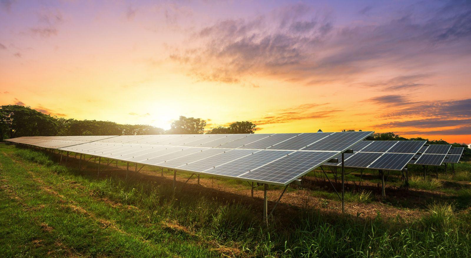 Plataforma de energia solar vende a energia produzida por usinas fotovoltaicas